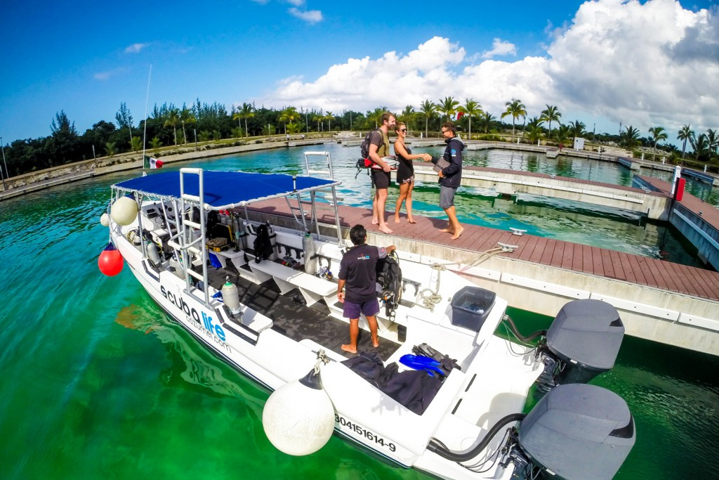 Cozumel certified diving scuba life cozumel cozumel - Cozumel dive sites ...