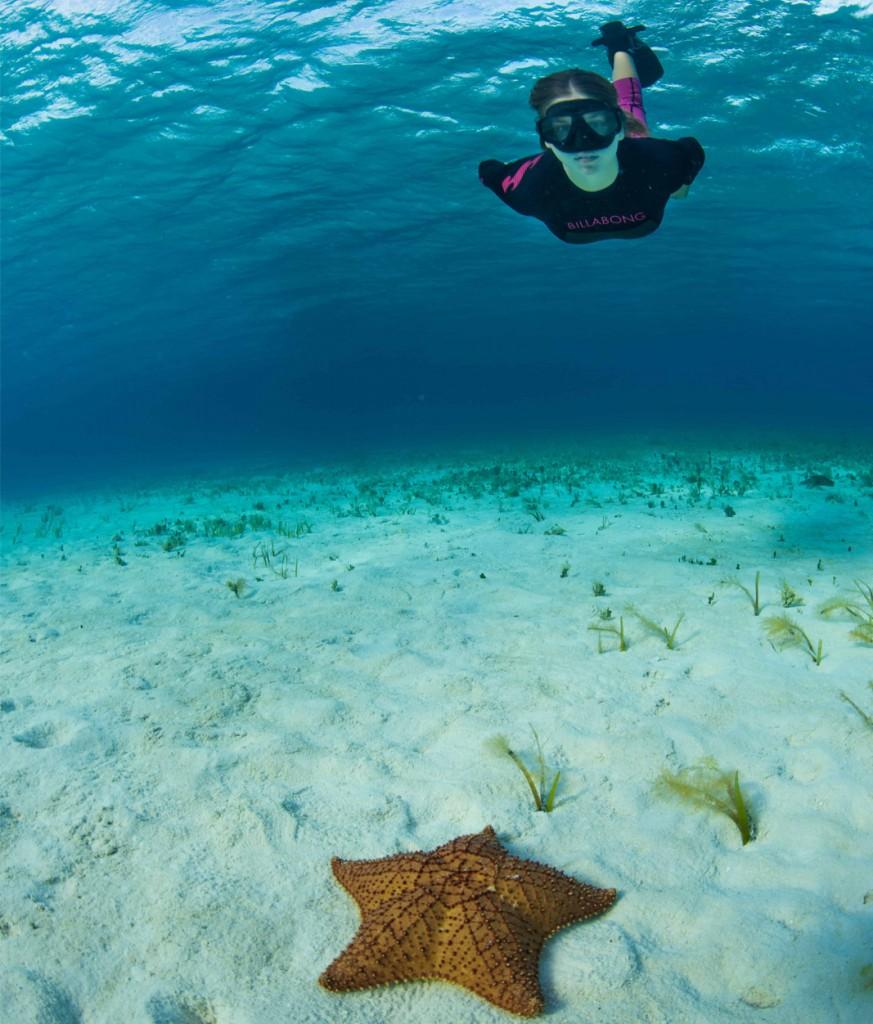 El Cielo Snorkeling Tour