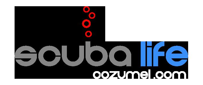 Scuba Life Cozumel | Cozumel Scuba Diving & Snorkeling